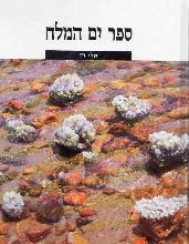 ים המלח / אלי רז