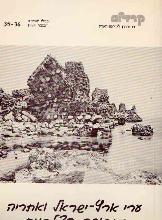 ערי ארץ-ישראל ואתריה בתקופה הצלבנית / מירון בנבנשתי