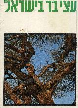 עצי בר בישראל