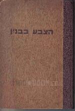 הצבע בבנין : ספר הדרכה לעבודות הצביעה בבנין / הוכן על ידי נ. קפלן.