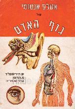 אטלס אנטומי של גוף האדם