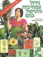 גידול צמחי בית והטיפול בהם