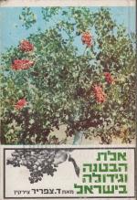 אלת הבטנה וגידולה בישראל