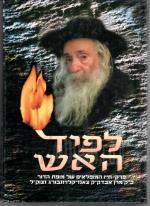 לפיד האש - פרקי חייו של יקותיאל יהודה הלברשטאם, אבדק