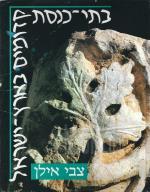 בתי כנסת קדומים בארץ ישראל (כחדש, המחיר כולל משלוח)