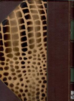 אוצר לשון המשנה : ספר המתאימות - קונקורדנציה לששה סדרי משנה / בשני כרכים (מלא)