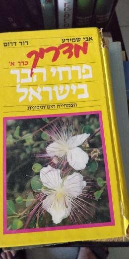 פרחי הבר חלק א
