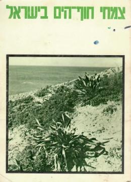 צמחי חוף הים בישראל
