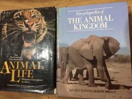 The animal kingdom encyclopedia