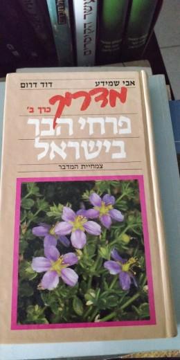 פרחי הבר צמחיית המדבר חלק ב