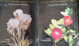 החי והצומח של ארץ ישראל אנציקלופדיה שימושית מאוירת צמחים בעלי פרחים א-ב כרכים 10- 11