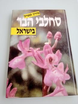 סחלבי הבר בישראל