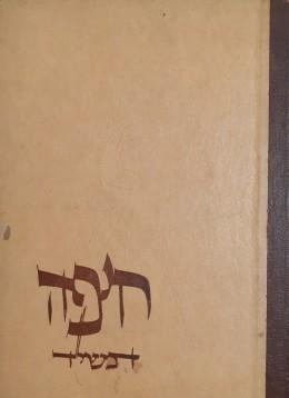 חיפה תשי